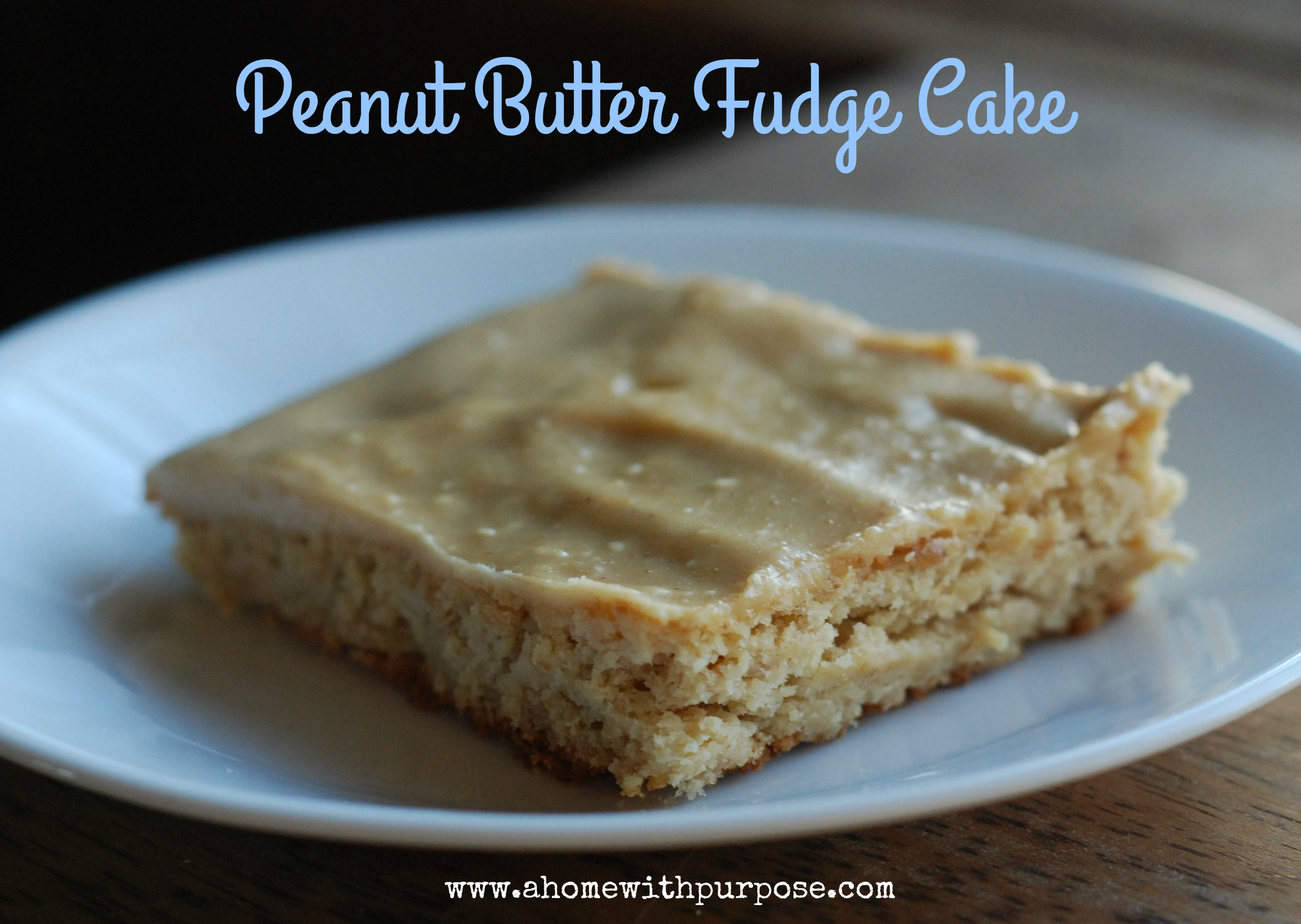 Peanut Butter Fudge Cake! (S) - A Home with Purpose