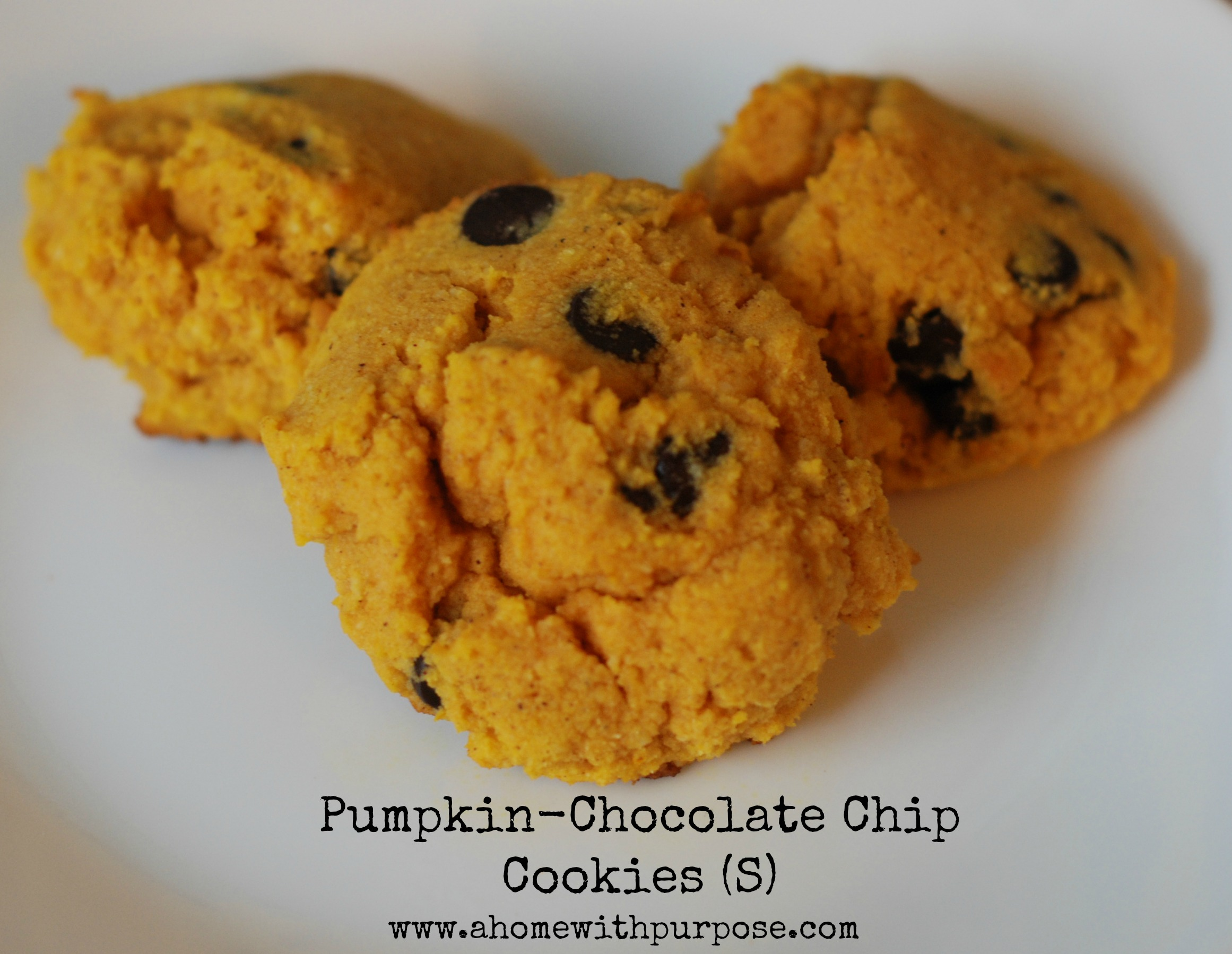 Pumpkin-Chocolate Chip Cookies (S) - A Home with Purpose