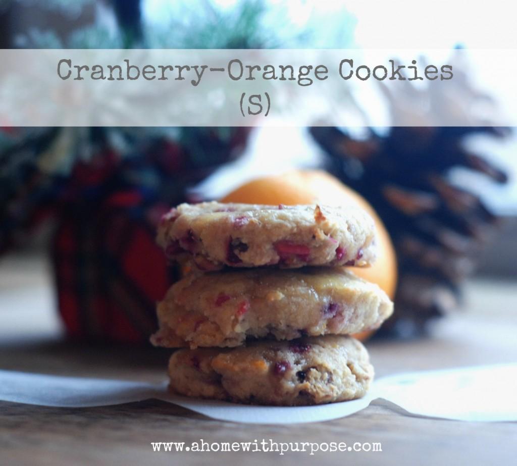 Cranberry-Orange Cookies (gluten, dairy and sugar free ...