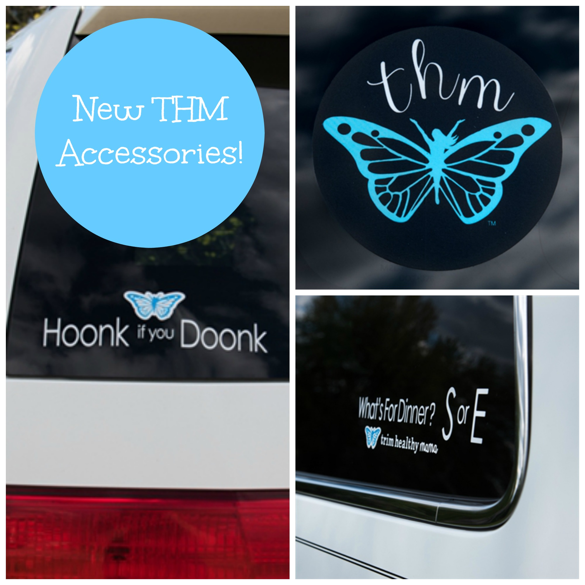 New Thm Items May 2016 A Home With Purpose