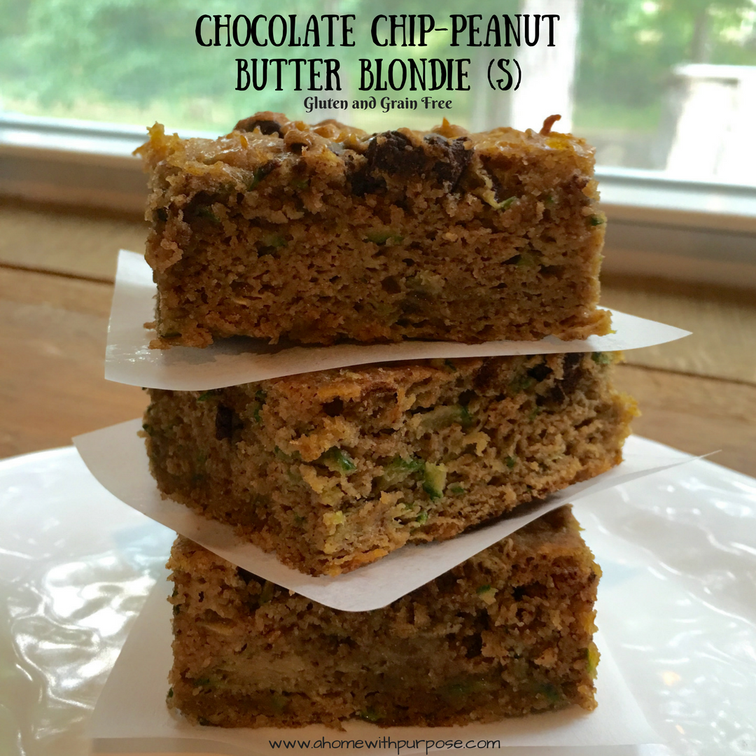 Chocolate Chip-Peanut Butter Blondie (S) - A Home with Purpose